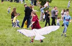 Trẻ em thích thú với những cánh diều sặc sỡ tại Lễ hội diều Motley