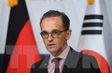 Đức kêu gọi nối lại các cuộc đàm phán hòa bình Ukraine