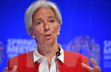 IMF cảnh báo kinh tế toàn cầu đang ở thời điểm nhạy cảm