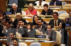 Việt Nam sẵn sàng đóng góp tích cực cho nỗ lực chung của quốc tế