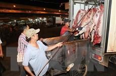 Phát hiện ổ dịch tả lợn châu Phi đầu tiên, TP.HCM khoanh vùng dập dịch