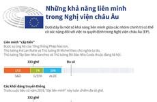 [Infographics] Những khả năng liên minh trong Nghị viện châu Âu