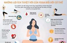 [Infographics] Những lợi ích tuyệt vời của Yoga đối với cơ thể