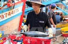 Có chế tài mạnh trong ngăn chặn khai thác hải sản bất hợp pháp