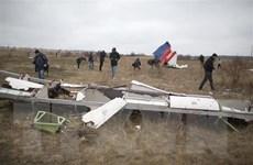 Malaysia Airlines bồi thường gia đình các nạn nhân Australia vụ MH17