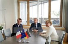 Thủ tướng Đức: Khó chọn được lãnh đạo EC do EP rời rạc, nhiều bất đồng