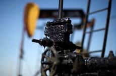 Giá dầu đi lên trước thềm Hội nghị G20 và cuộc họp của OPEC