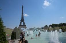 Cả châu Âu đang ''vã mồ hôi'' vì nắng nóng kỷ lục