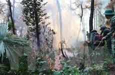 Hà Tĩnh: Đám cháy lại bùng phát, tạm giữ một người nghi liên quan