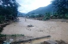 Các tỉnh từ Quảng Ngãi trở ra chủ động ứng phó với áp thấp nhiệt đới