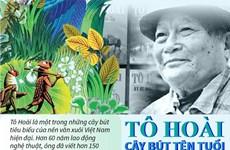 Tô Hoài - Cây bút tên tuổi của nền văn học Việt Nam