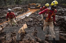 Vụ vỡ đập tại Brazil: Vale SA chi hơn 106 triệu USD bồi thường