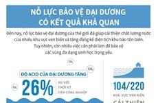 [Infographics] Nỗ lực bảo vệ đại dương có kết quả khả quan