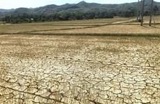 Nguy cơ Trung bộ sẽ có 65.500ha bị hạn hán, thiếu nước