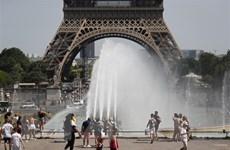 Nước Pháp đặt mức báo động cam về tình trạng nắng nóng