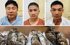 Bắt giữ ''ông trùm'' đường dây buôn bán động vật hoang dã