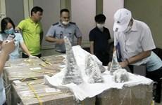 Cận cảnh vụ vận chuyển hơn 125kg sừng tê giác qua sân bay Nội Bài