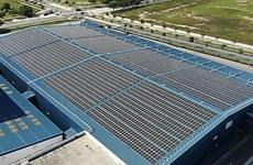 Shell cân nhắc lắp hệ thống năng lượng Mặt Trời tại nhà máy Singapore