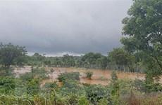 Mưa lớn kéo dài tại Đắk Nông làm thiệt hại gần 135 tỷ đồng
