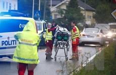 Nghi phạm trong vụ xả súng ở Na Uy không nhận tội