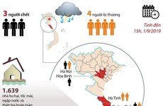 [Infographics] Thiệt hại nặng nề về người và tài sản do bão số 4