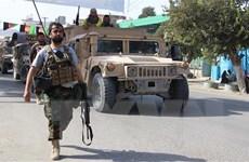 Mỹ và Taliban nhất trí về dự thảo thỏa thuận hòa bình Afghanistan