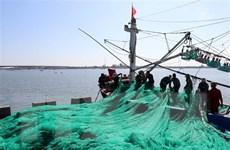 Quy chế hoạt động của Ban Chỉ đạo chống khai thác hải sản bất hợp pháp