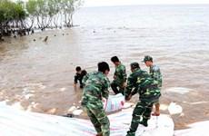 Nước đầu nguồn sông Cửu Long đang lên, nguy cơ ngập lụt ở vùng trũng