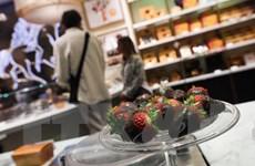 Khám phá thiên đường của các loại chocolate ngon nhất thế giới