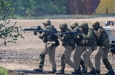 Liên minh cầm quyền gia hạn sứ mệnh quân đội Đức tại Syria và Iraq