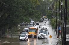 Mỹ: Mưa bão hoành hành tại Houston gây thiệt hại nặng