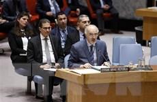 Hội đồng Bảo an không thông qua được nghị quyết về Syria