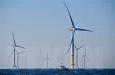 Gần một nửa sản lượng điện ở Đức đến từ các nguồn năng lượng tái tạo