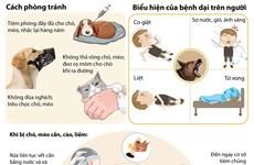 [Infographics] Cảnh báo về số ca tử vong do bệnh dại gây nên
