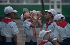 Hàn Quốc thảo luận với UNDP về viện trợ cho Triều Tiên