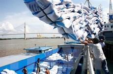 Xuất khẩu gạo những tháng cuối năm: Chờ tín hiệu tích cực