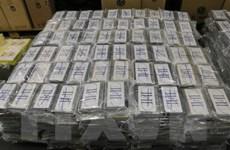 Thu giữ hàng chục tấn cocaine trên phạm vi toàn cầu