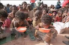 UNICEF: Hơn 30% trẻ em thế giới có vấn đề về dinh dưỡng