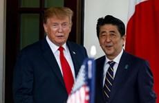 Thỏa thuận thương mại Nhật-Mỹ và 'cúp vàng chính trị' của ông Trump