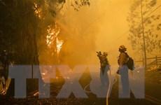 Mỹ: 1.100 lính cứu hỏa chống chọi cháy rừng lan rộng tại Los Angeles