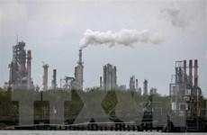 Giá dầu trên thị trường thế giới diễn biến trái chiều