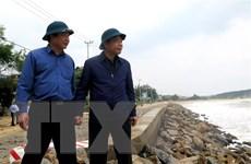 Quảng Ngãi khẩn trương bảo vệ người dân trước cơn bão số 6
