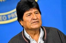Bolivia: Tổng thống từ chức Morales cáo buộc lệnh bắt giữ là trái phép