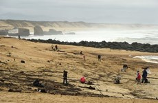 Pháp phát hiện lượng lớn ma túy không rõ nguồn gốc dạt vào bờ biển