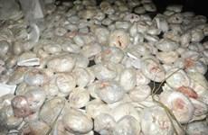 Trung Quốc thu giữ hàng chục tấn thực phẩm không rõ nguồn gốc