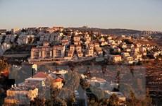 Liên đoàn Arab lên án tuyên bố của Mỹ về các khu định cư Do Thái