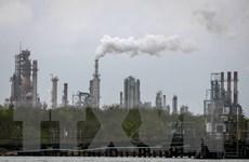 Kinh tế thế giới dự báo thiệt hại 7.900 tỷ USD vào năm 2050