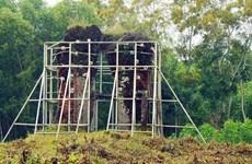 Phật viện Đồng Dương đón nhận Bằng xếp hạng Di tích quốc gia đặc biệt