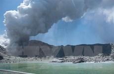 Núi lửa phun trào ở New Zealand: Số nạn nhân tiếp tục tăng