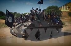 Cộng hòa Chad: Nghi ngờ nhóm Boko Haram sát hại ít nhất 14 dân thường